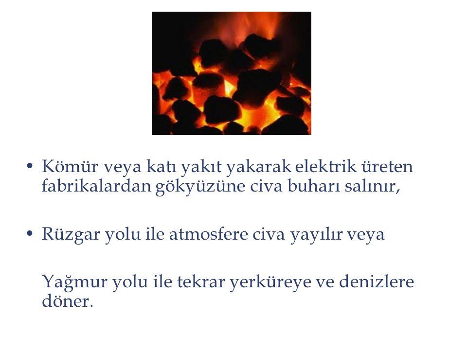 Kömür veya katı yakıt yakarak elektrik üreten fabrikalardan gökyüzüne civa buharı salınır,