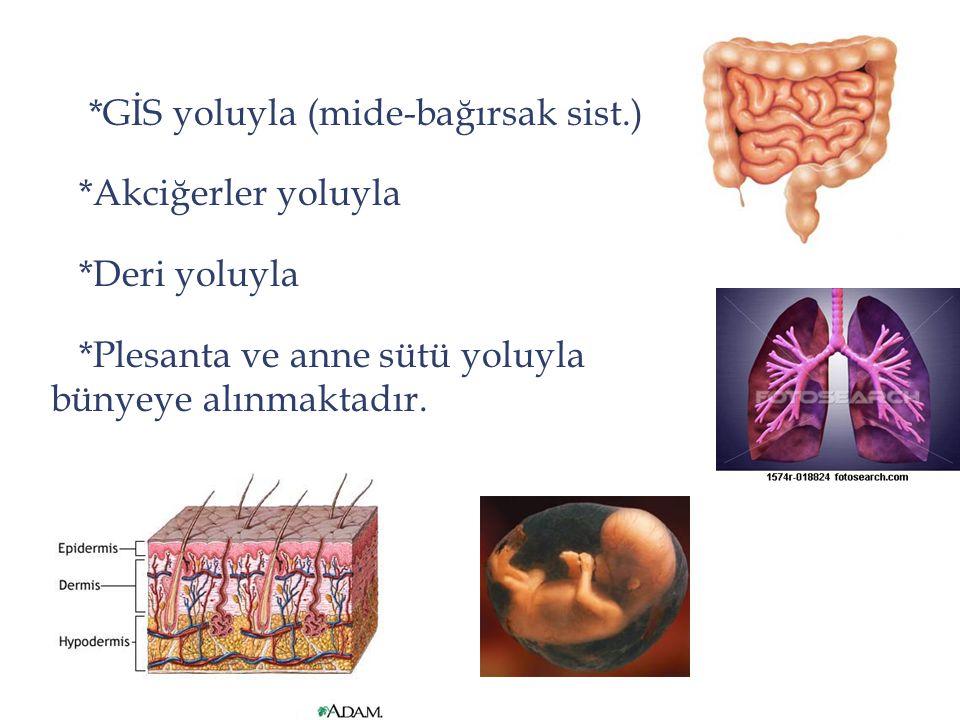 *GİS yoluyla (mide-bağırsak sist.)