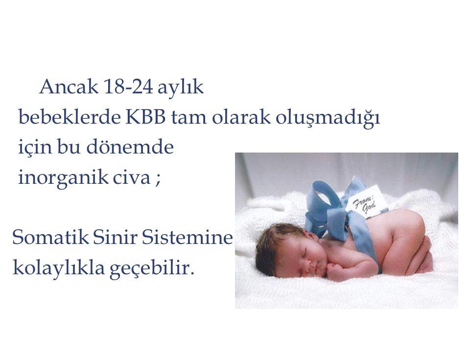 Ancak 18-24 aylık bebeklerde KBB tam olarak oluşmadığı. için bu dönemde. inorganik civa ; Somatik Sinir Sistemine.