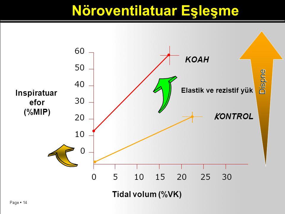 Nöroventilatuar Eşleşme Elastik ve rezistif yük