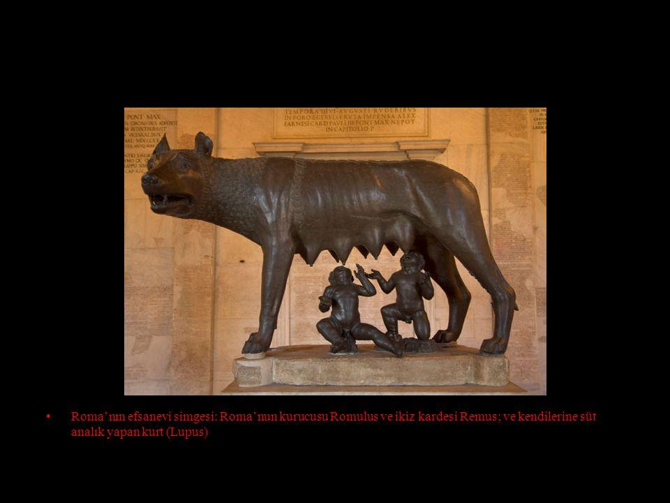 Roma'nın efsanevi simgesi: Roma'nun kurucusu Romulus ve ikiz kardesi Remus; ve kendilerine süt analık yapan kurt (Lupus)
