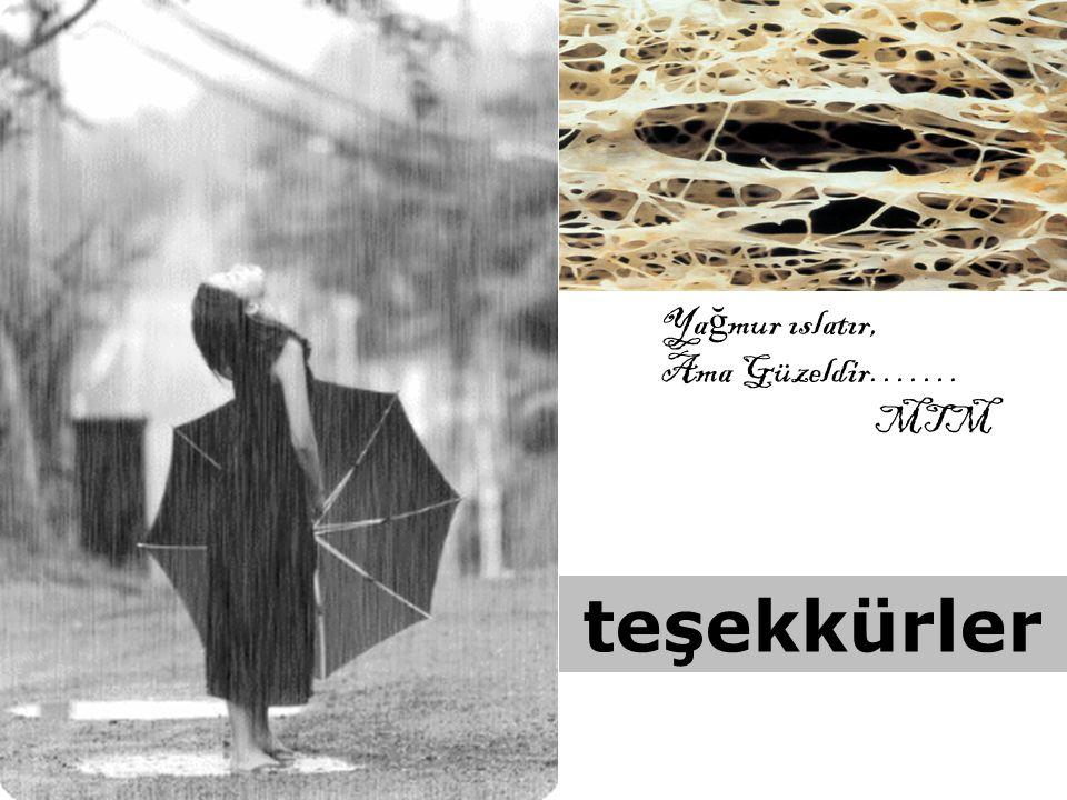 Yağmur ıslatır, Ama Güzeldir……. MTM teşekkürler