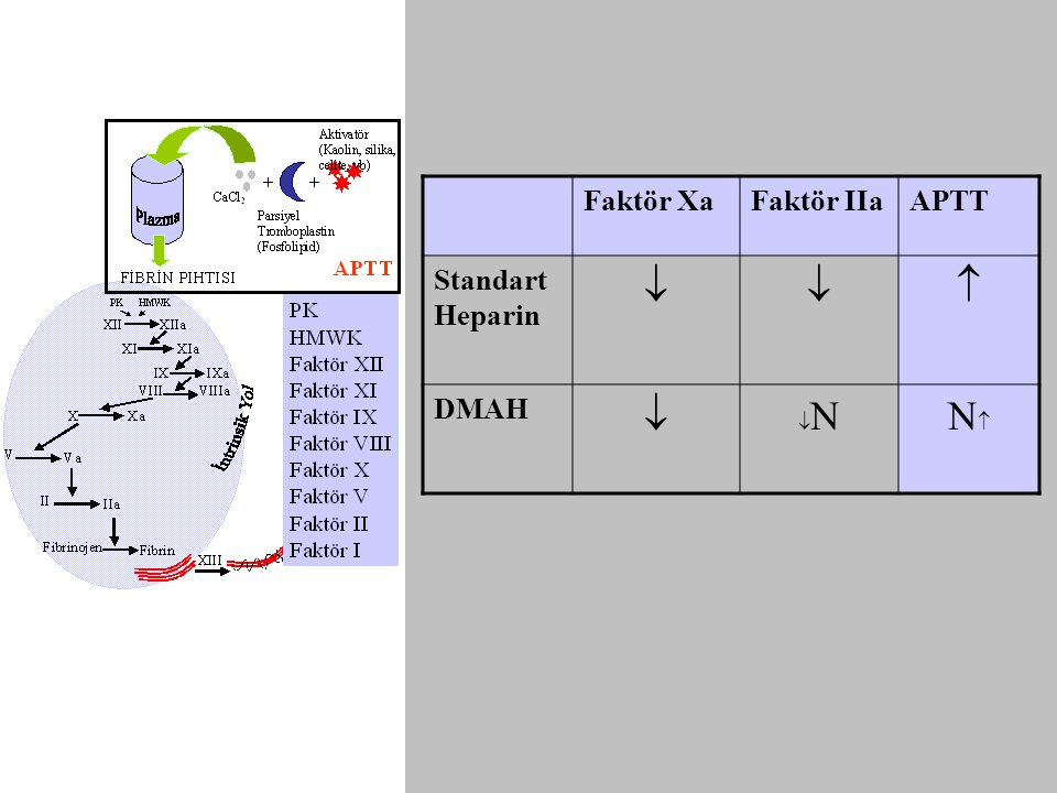Faktör Xa Faktör IIa APTT Standart Heparin   DMAH N N