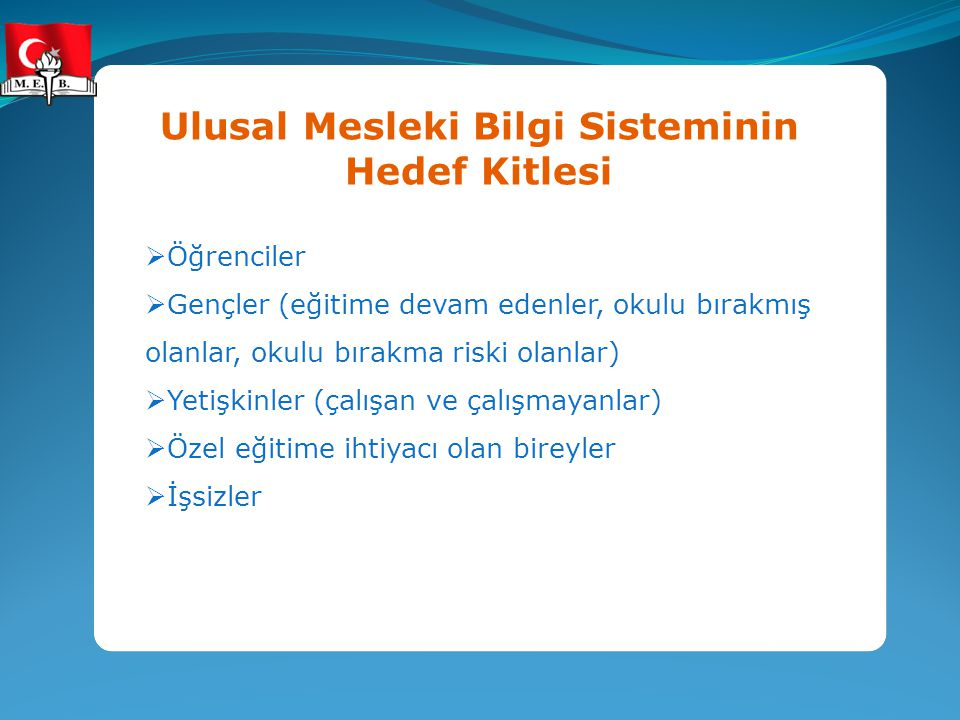 Ulusal Mesleki Bilgi Sisteminin