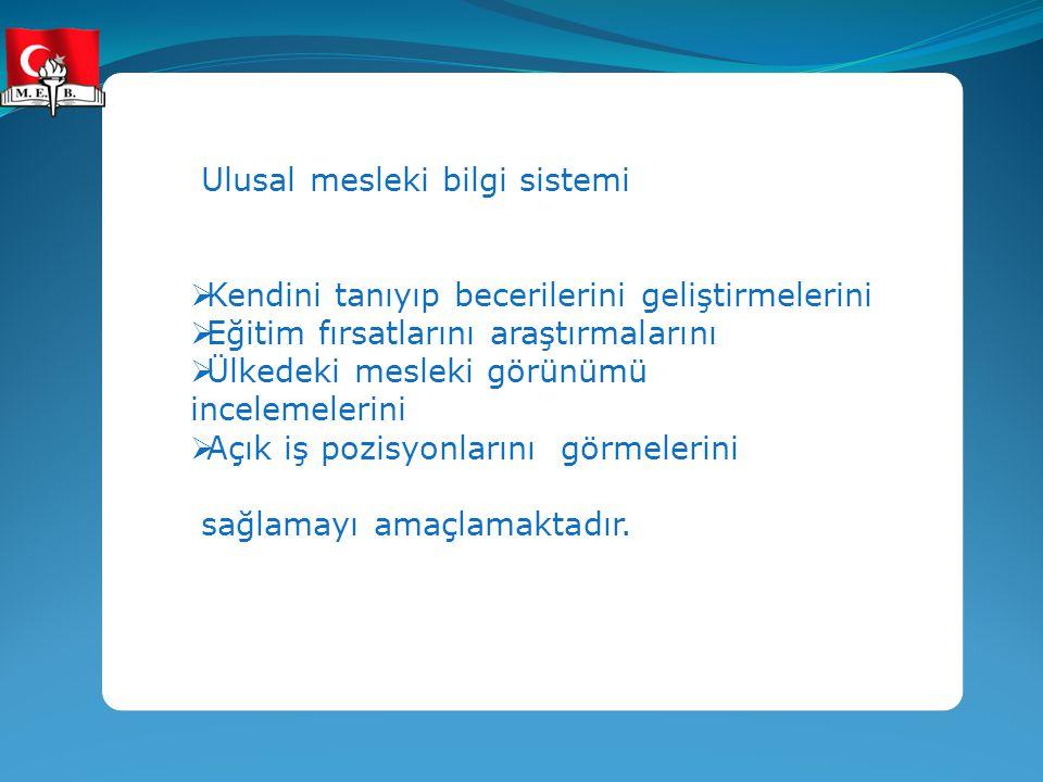 Ulusal mesleki bilgi sistemi