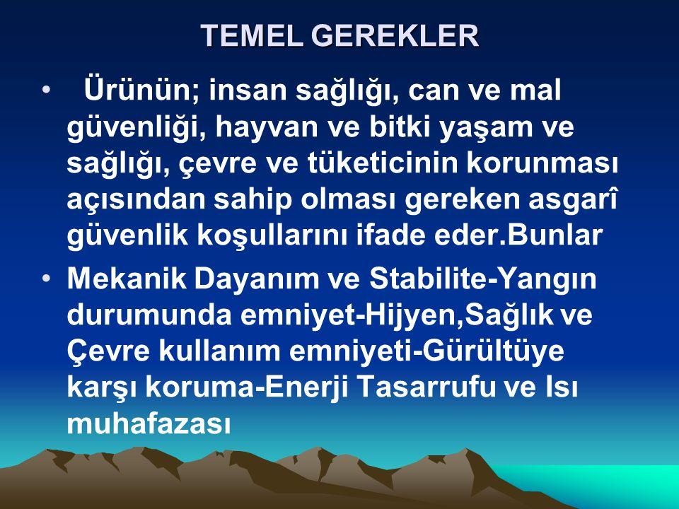 TEMEL GEREKLER