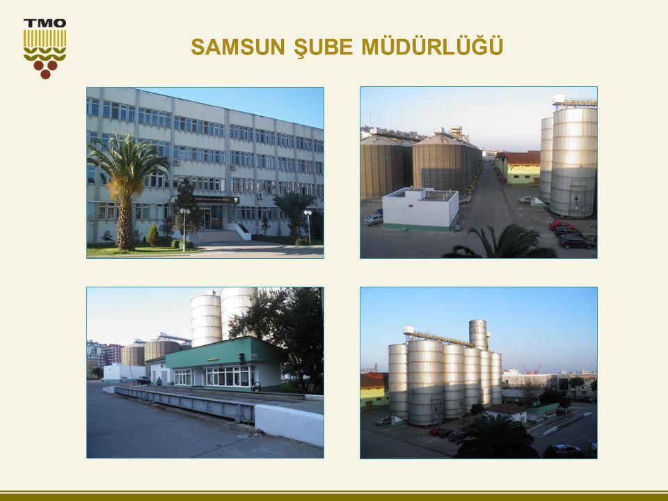 SAMSUN ŞUBE MÜDÜRLÜĞÜ