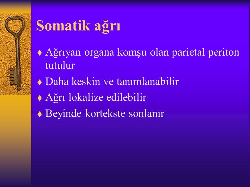 Somatik ağrı Ağrıyan organa komşu olan parietal periton tutulur