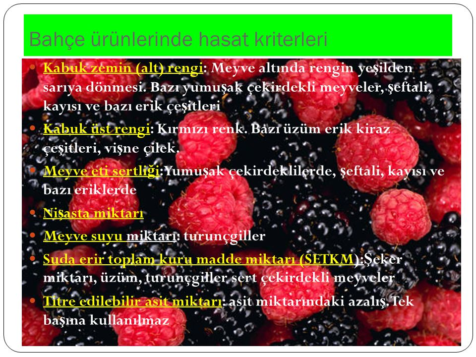 Bahçe ürünlerinde hasat kriterleri