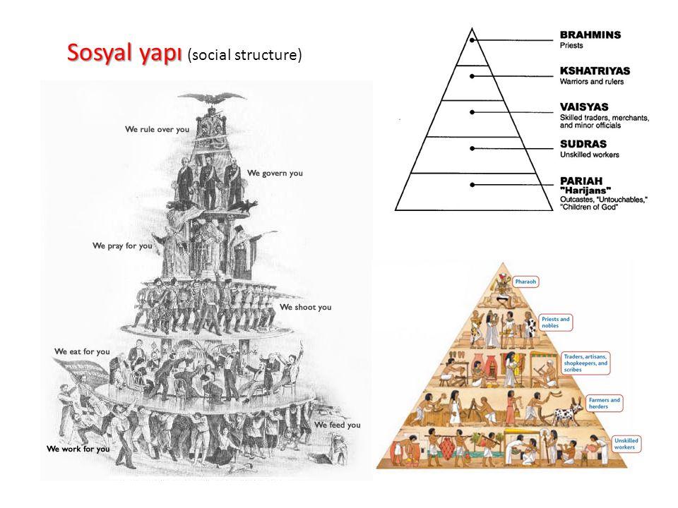 Sosyal yapı (social structure)