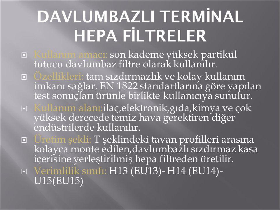 DAVLUMBAZLI TERMİNAL HEPA FİLTRELER
