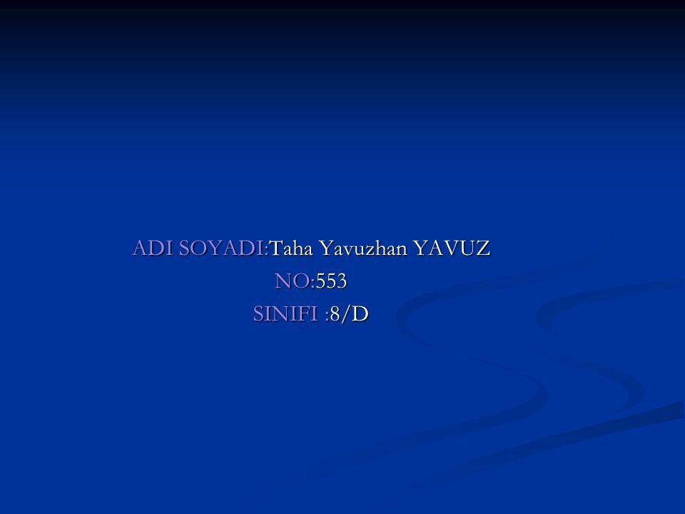 ADI SOYADI:Taha Yavuzhan YAVUZ