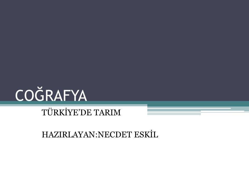 TÜRKİYE'DE TARIM HAZIRLAYAN:NECDET ESKİL