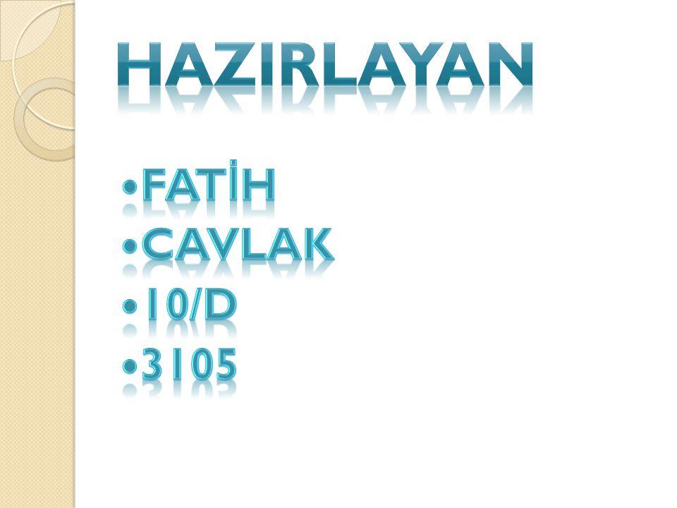 HAZIRLAYAN FATİH CAVLAK 10/D 3105