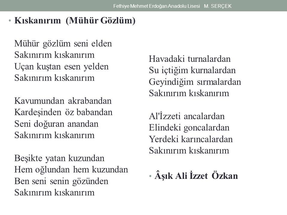 Fethiye Mehmet Erdoğan Anadolu Lisesi M. SERÇEK