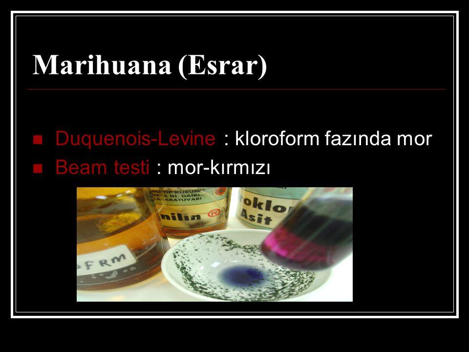 Marihuana (Esrar) Duquenois-Levine : kloroform fazında mor