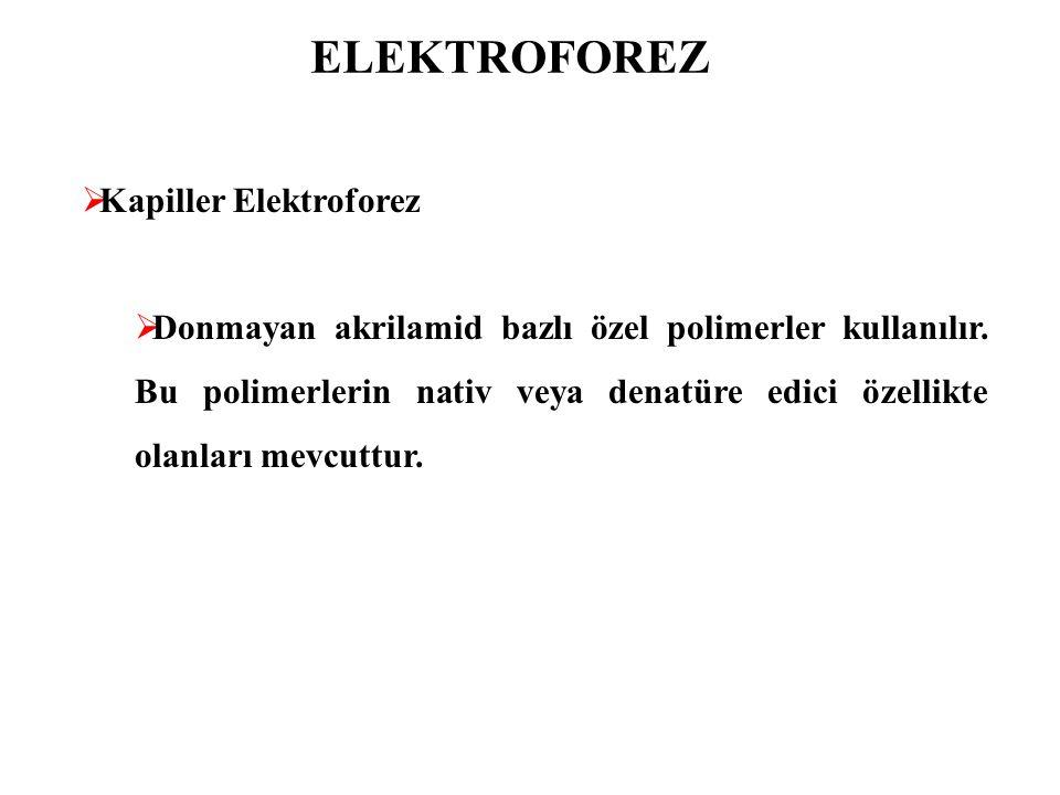 ELEKTROFOREZ Kapiller Elektroforez