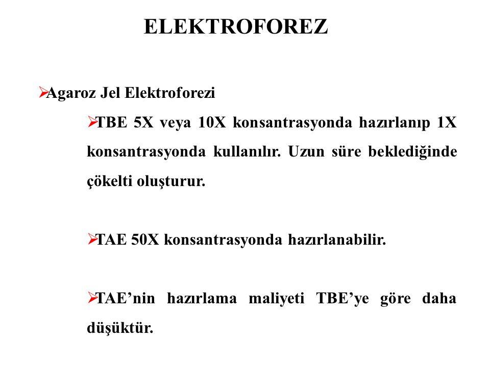ELEKTROFOREZ Agaroz Jel Elektroforezi