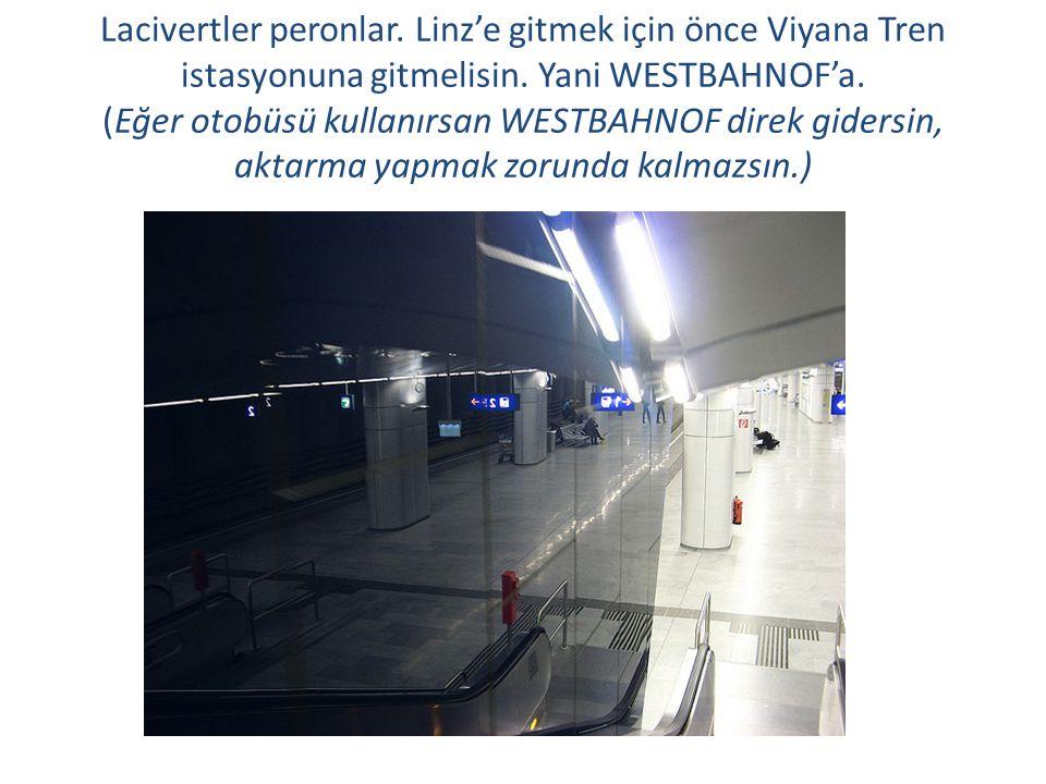 Lacivertler peronlar. Linz'e gitmek için önce Viyana Tren istasyonuna gitmelisin.
