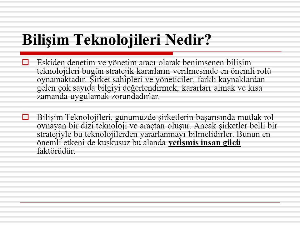 Bilişim Teknolojileri Nedir