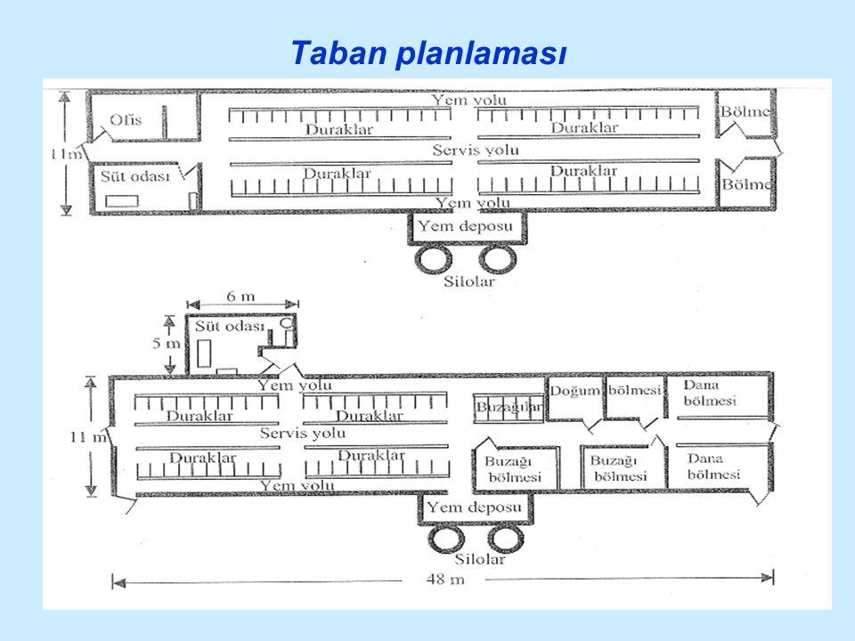 Taban planlaması