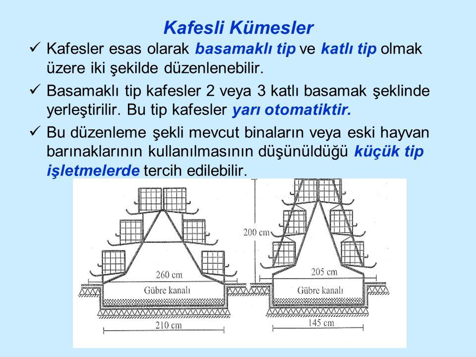 Kafesli Kümesler Kafesler esas olarak basamaklı tip ve katlı tip olmak üzere iki şekilde düzenlenebilir.