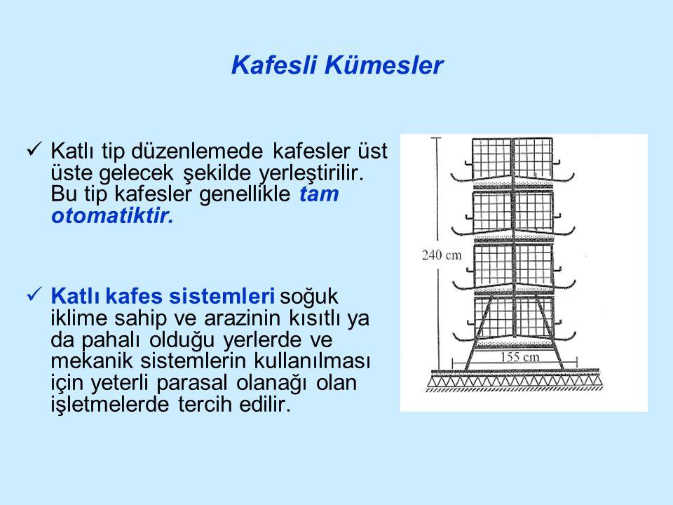 Kafesli Kümesler Katlı tip düzenlemede kafesler üst üste gelecek şekilde yerleştirilir. Bu tip kafesler genellikle tam otomatiktir.