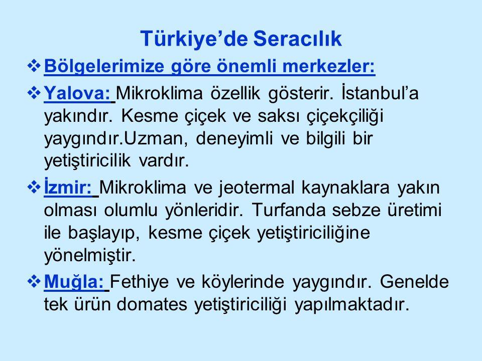 Türkiye'de Seracılık Bölgelerimize göre önemli merkezler: