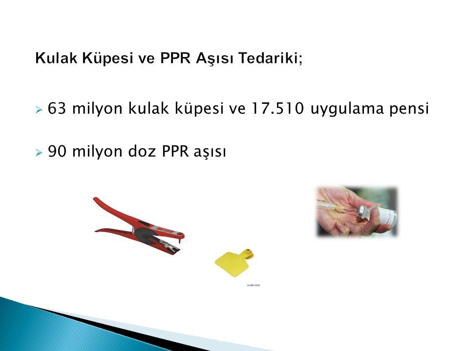 Kulak Küpesi ve PPR Aşısı Tedariki;