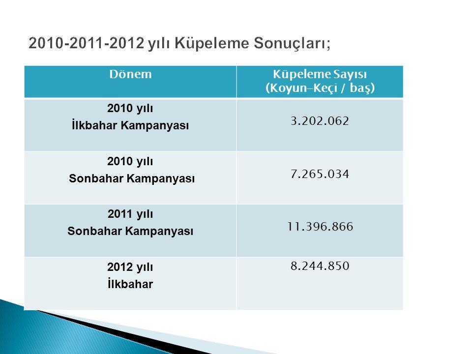 2010-2011-2012 yılı Küpeleme Sonuçları;