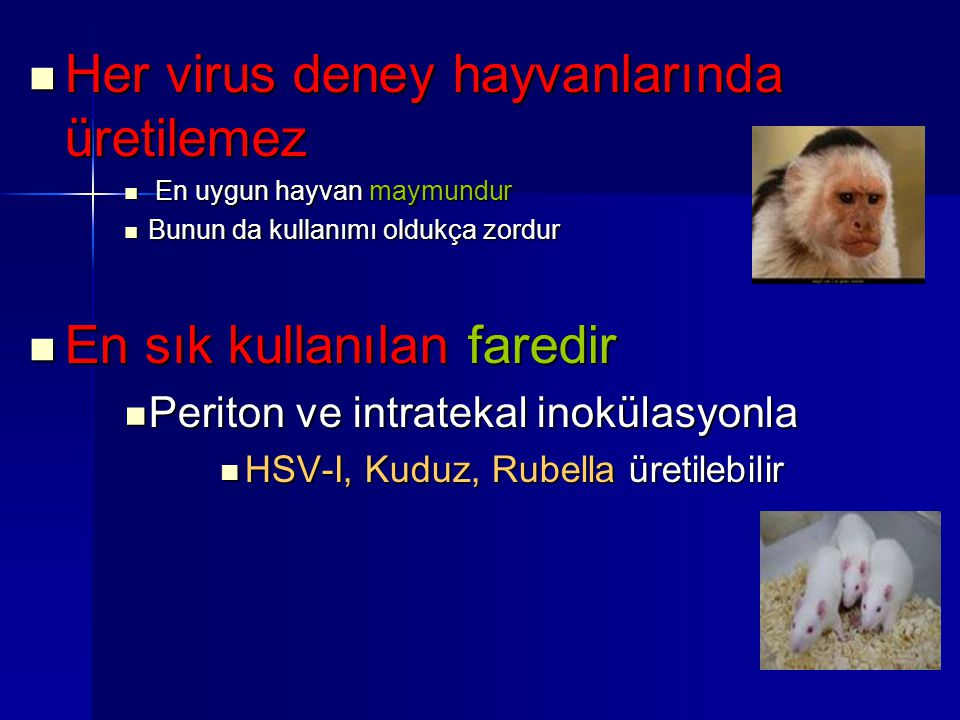 Her virus deney hayvanlarında üretilemez