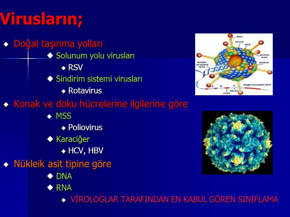 Virusların; Doğal taşınma yolları