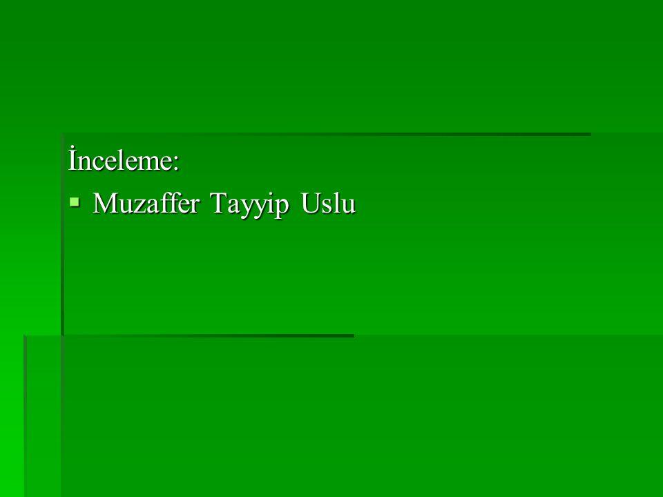 İnceleme: Muzaffer Tayyip Uslu