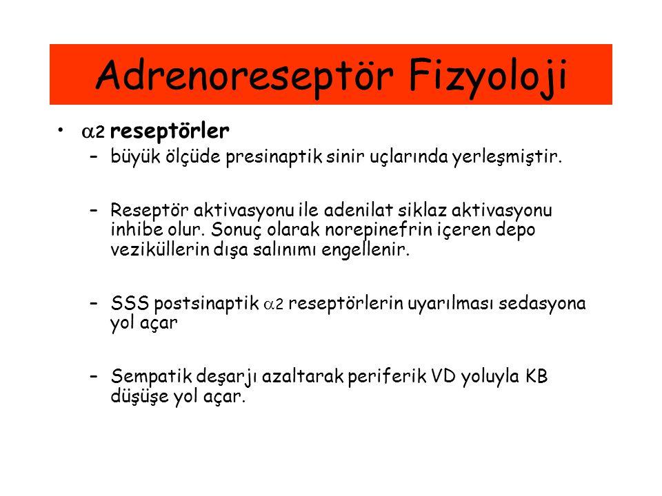 Adrenoreseptör Fizyoloji