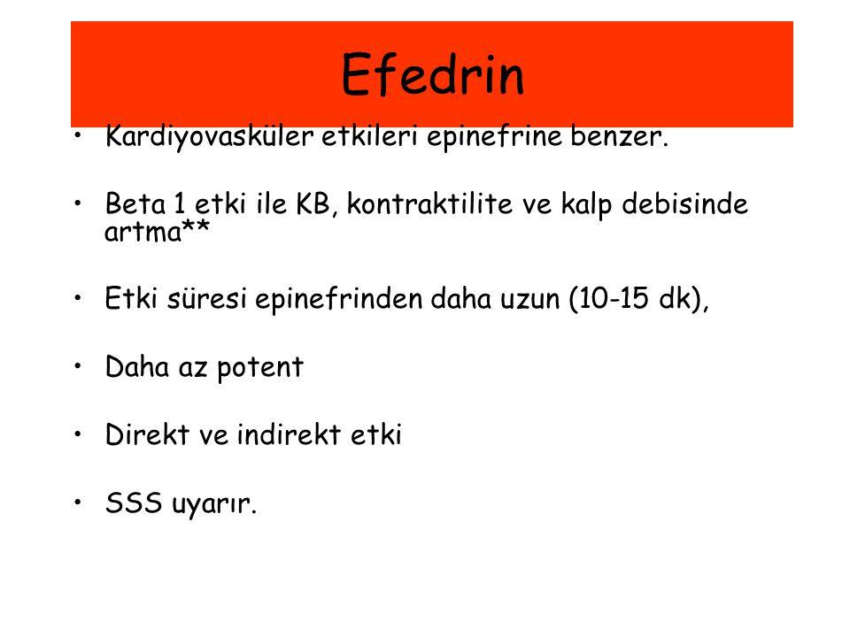 Efedrin Kardiyovasküler etkileri epinefrine benzer.