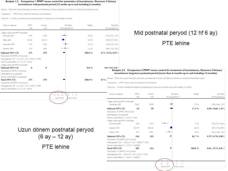 Mid postnatal peryod (12 hf 6 ay) PTE lehine