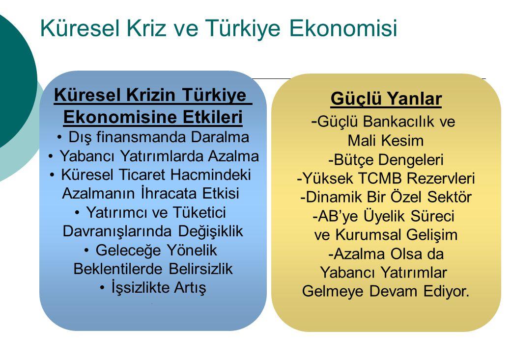 Küresel Kriz ve Türkiye Ekonomisi