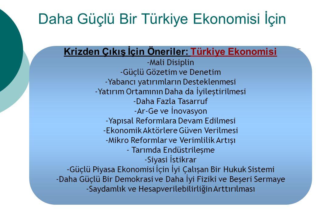 Daha Güçlü Bir Türkiye Ekonomisi İçin