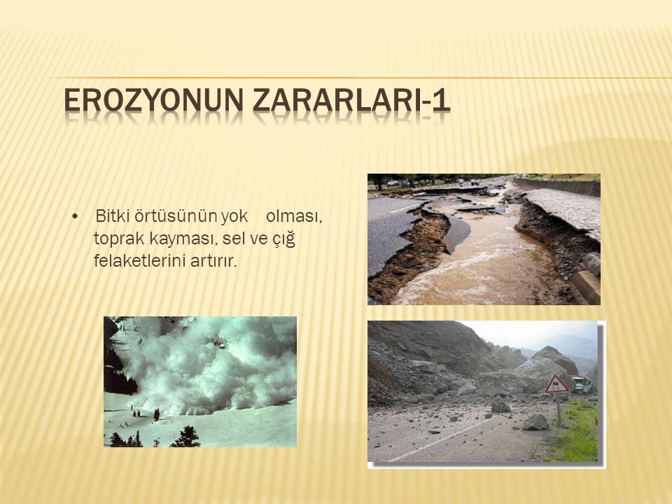 EROZYONUN ZARARLARI-1 • Bitki örtüsünün yok olması, toprak kayması, sel ve çığ felaketlerini artırır.