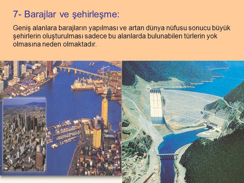 7- Barajlar ve şehirleşme: