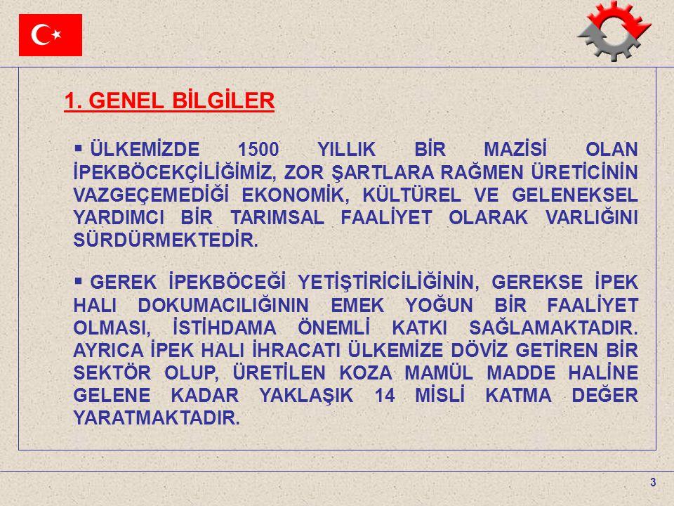 1. GENEL BİLGİLER