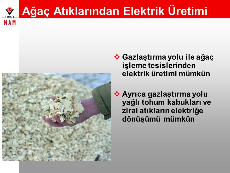 Ağaç Atıklarından Elektrik Üretimi