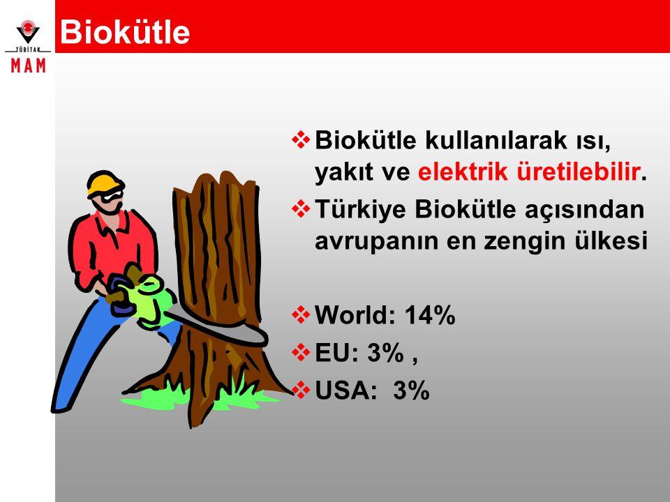 Biokütle Biokütle kullanılarak ısı, yakıt ve elektrik üretilebilir.