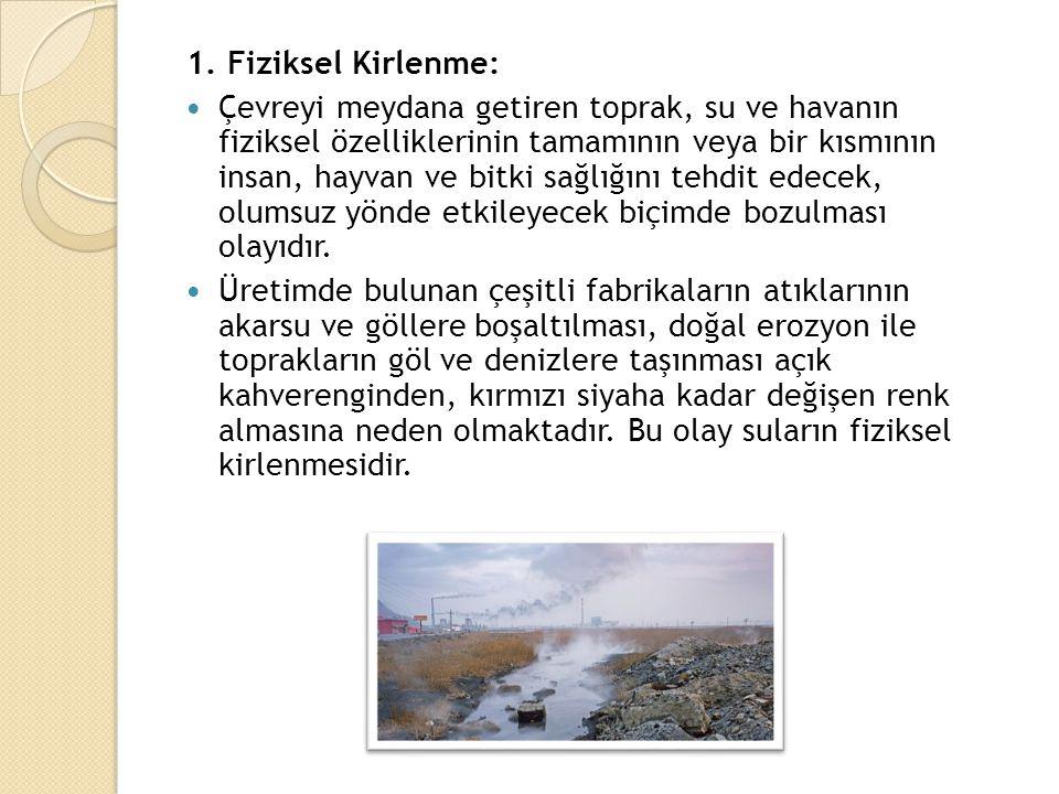 1. Fiziksel Kirlenme: