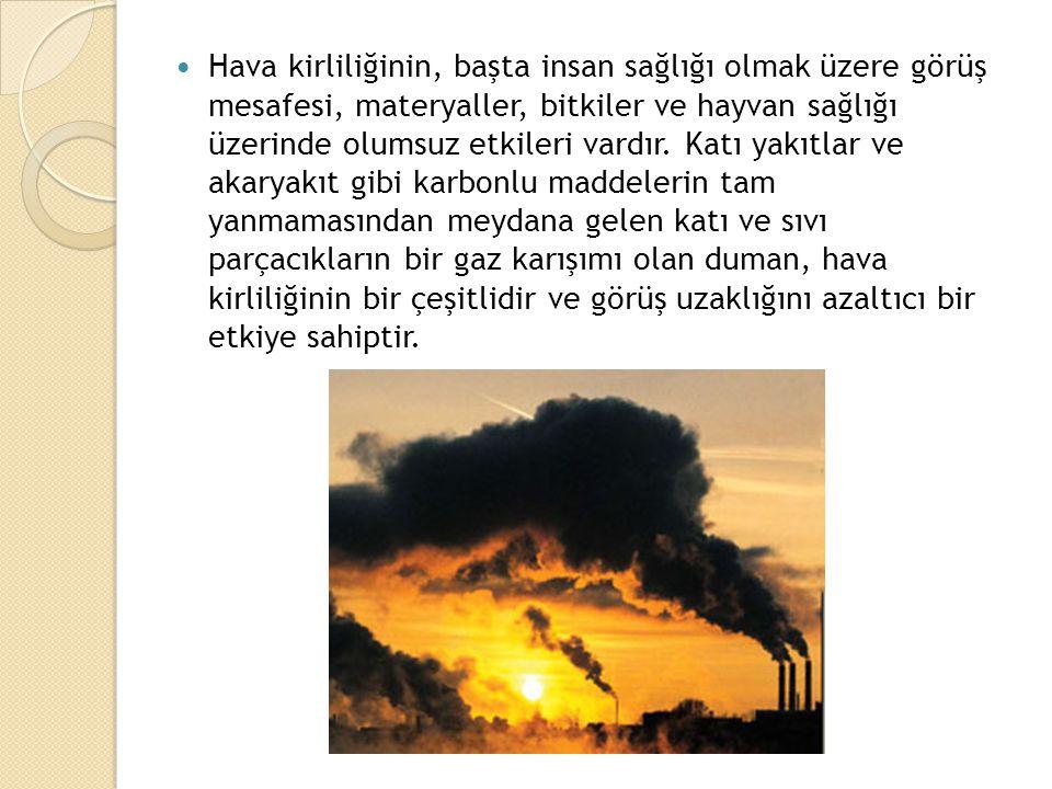 Hava kirliliğinin, başta insan sağlığı olmak üzere görüş mesafesi, materyaller, bitkiler ve hayvan sağlığı üzerinde olumsuz etkileri vardır.
