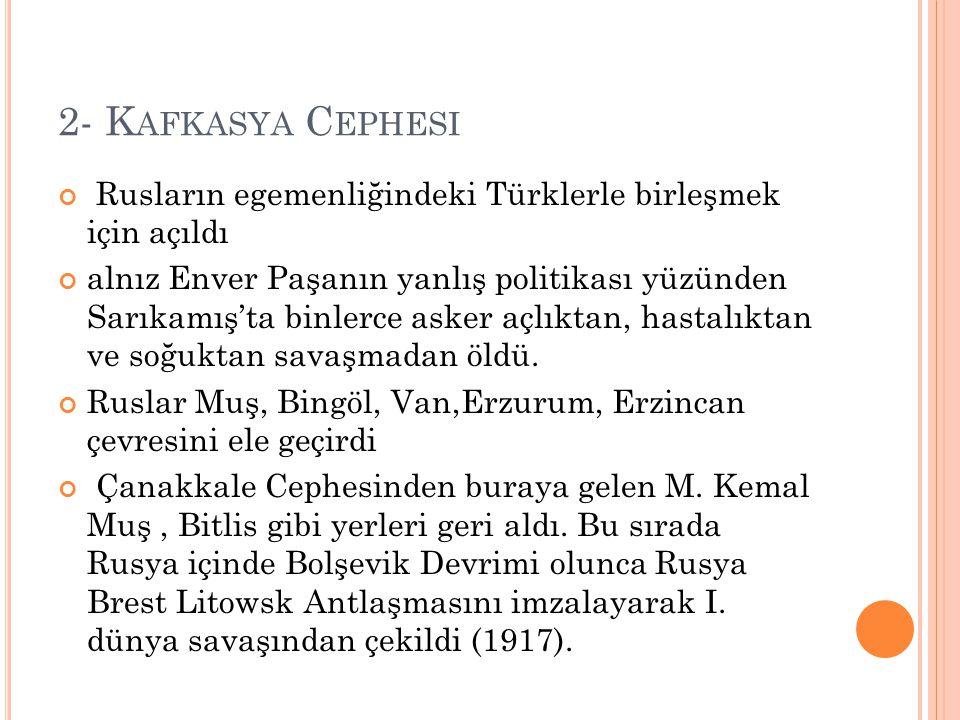 2- Kafkasya Cephesi Rusların egemenliğindeki Türklerle birleşmek için açıldı.