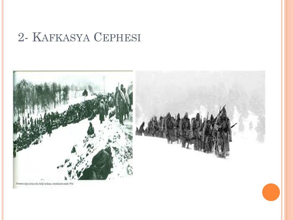 2- Kafkasya Cephesi