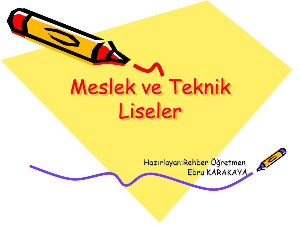 Meslek ve Teknik Liseler