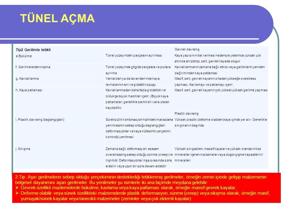 TÜNEL AÇMA RICS - Royal Institution of Chartered Surveyors