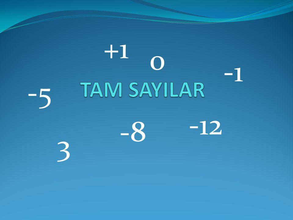 +1 TAM SAYILAR -1 -5 -12 -8 3